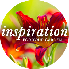 Inspiration for your Garden