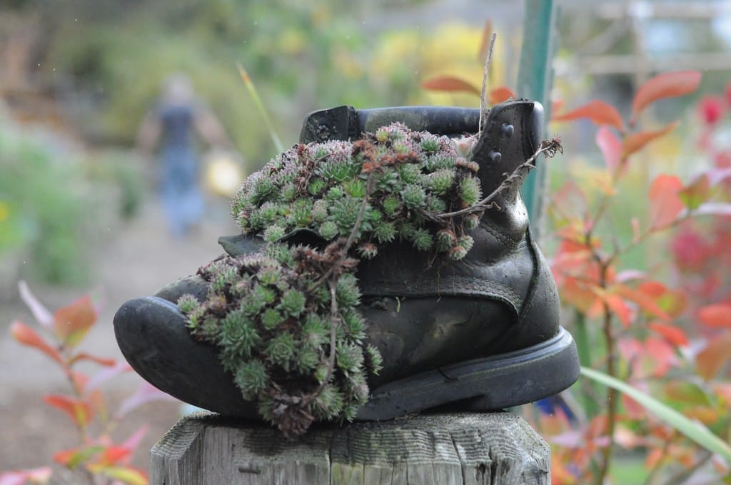 Boot as a planter. Learn how to transform your shoes here on the Shoetique Blog