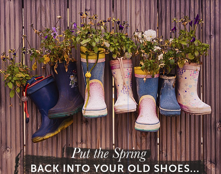 Transform your old shoes into planters with the Shoetique Blog